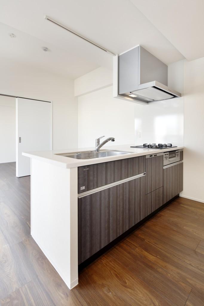 6_CAPS4602_1001号室+キッチン-min